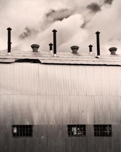 Gleaming Shell, Coal Heart, Nordegg
